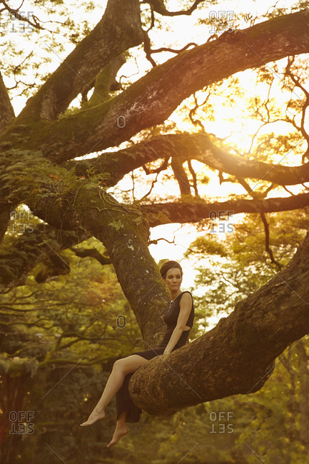 Woman in evening gown sitting in banyan tree