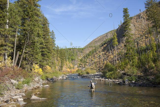 Fisherman wading in river