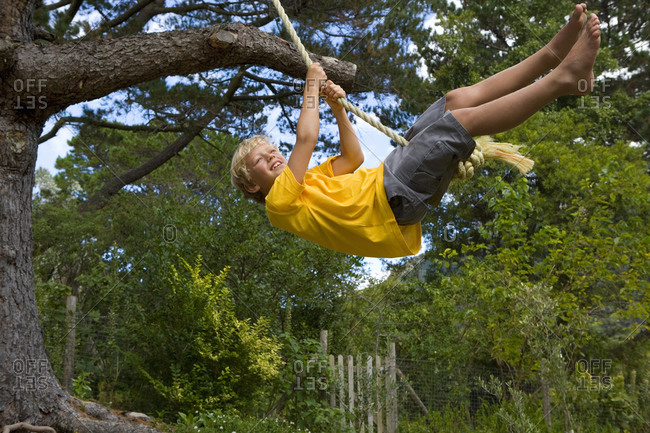 Boy  on rope swing, smiling, low angle view