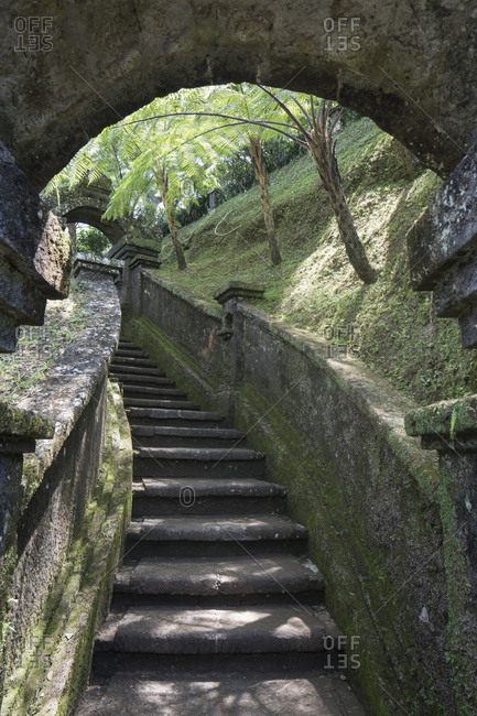 Mossy stairway in tropical park