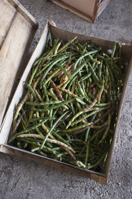 Fresh green beans in a wooden crate