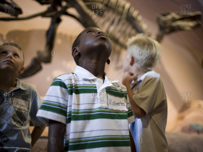 boys (6-9) in museum of dinosaurs