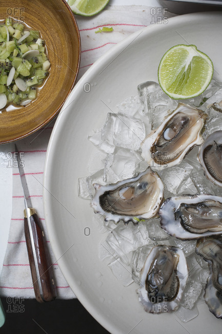 Oysters with lime over ice and salsa