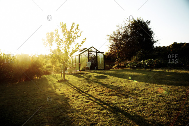 Overview of a garden and greenhouse