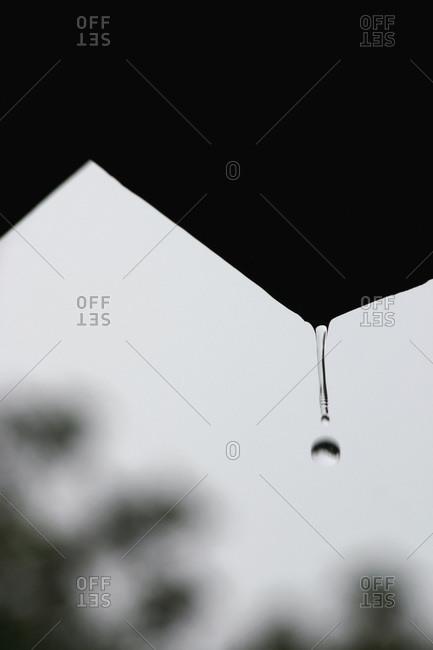 A drop of water falling