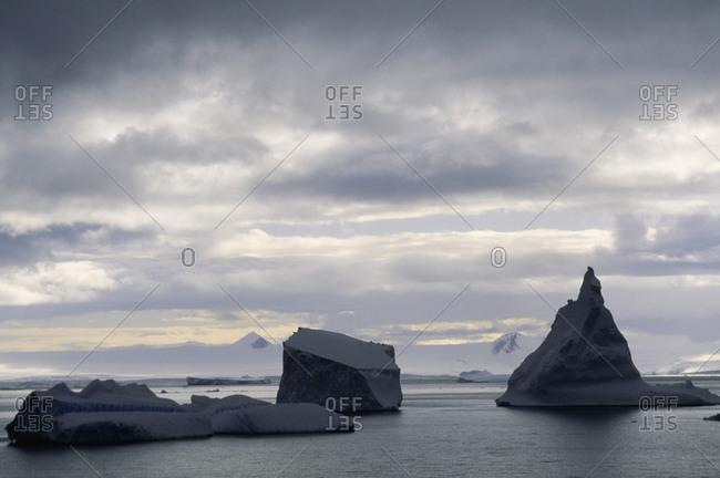 Antarctic landscape with icebergs