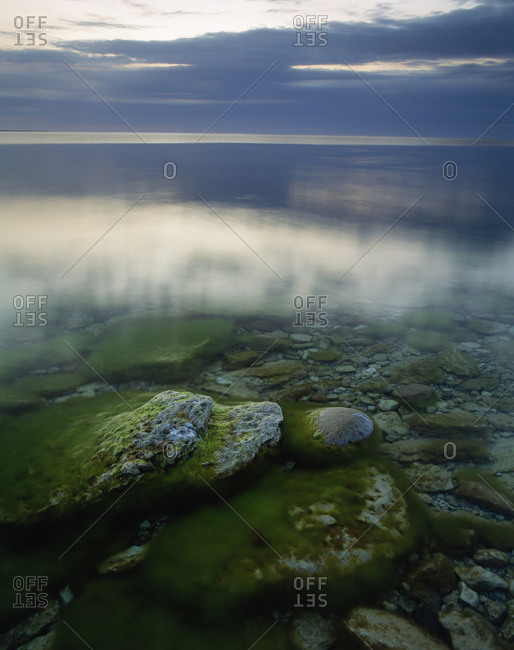 Waterscape with mossy stones