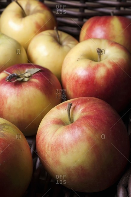 Mitsu apples at the market in New Jersey (USA)