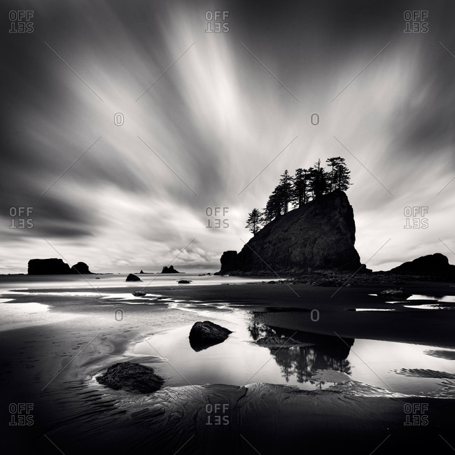 Black and white shot of Olympic National Park