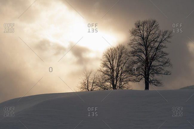 Tranquil winter scene - Offset Collection