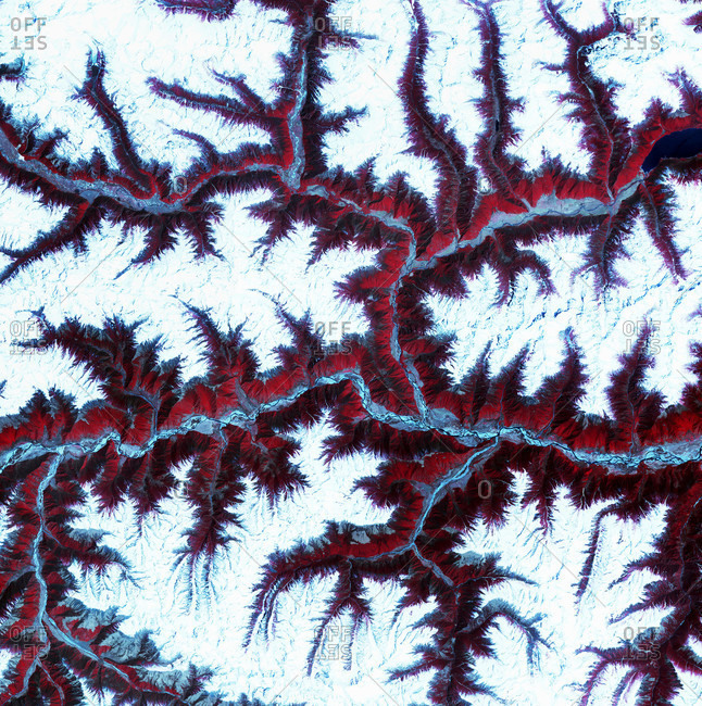Terra Satellite image of Eastern Himalayas. North is at top. Snow is white, vegetation is red, barren areas are light blue and water is dark blue.