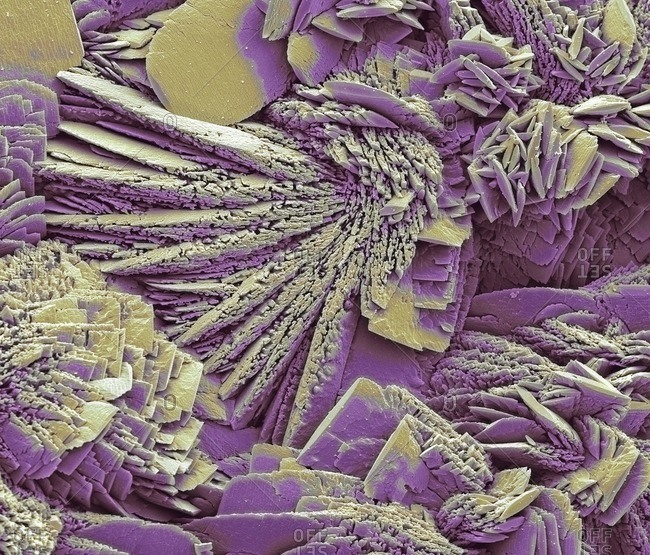Lime scale under a Color scanning electron micrograph.