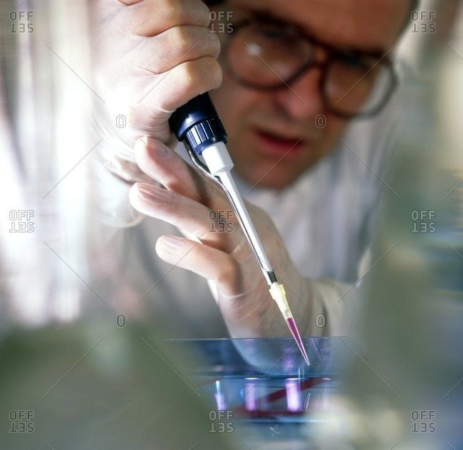 Researcher using a pipette to load a sample of DNA (DeoxyriboNucleic Acid) into an agarose gel for separation by electrophoresis
