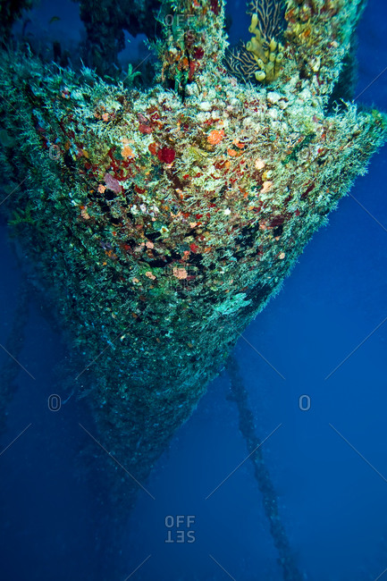 Coral encrusted shipwreck underwater