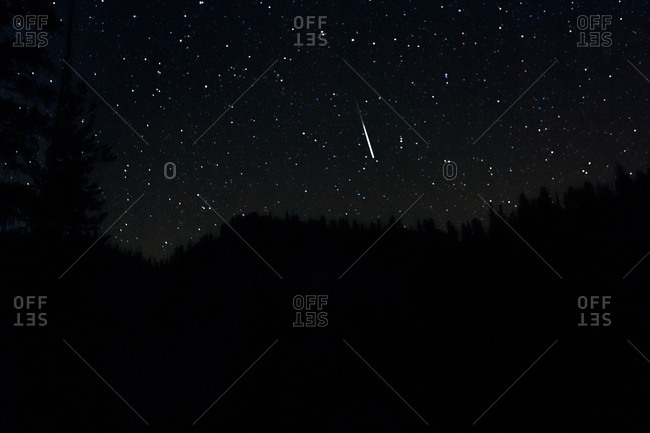 Stars on the sky above forest at night
