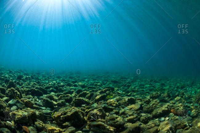 View of sunbeams underwater