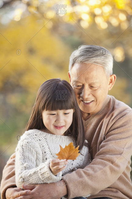Chinese grandfather and granddaughter looking at autumn leaf