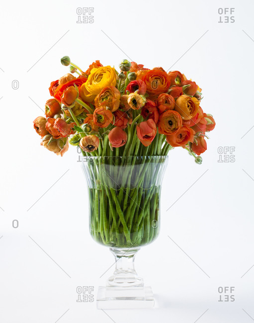 Bunch of colorful flowers in glass vase