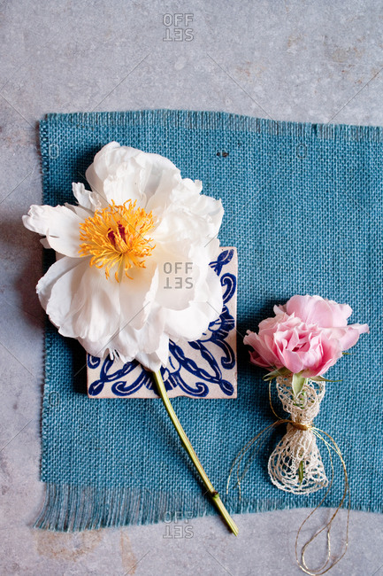 White and pink peony flowers on blue fabric