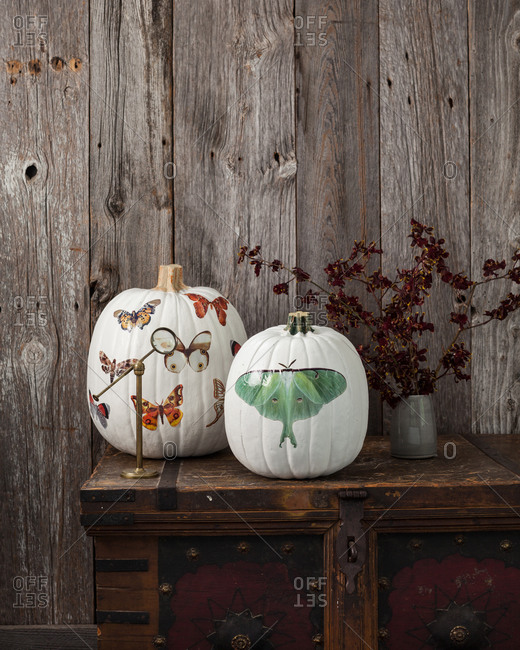 White painted pumpkins on wooden chest