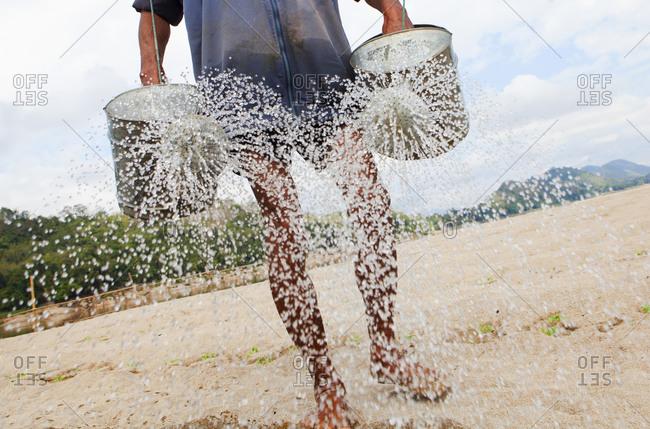Farmer watering fields