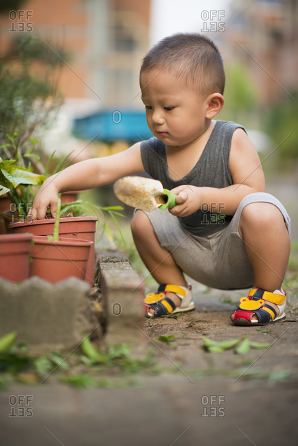Little boy works in home garden