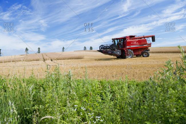Harvester gathering wheat on farm, Biei, Hokkaido, Japan.