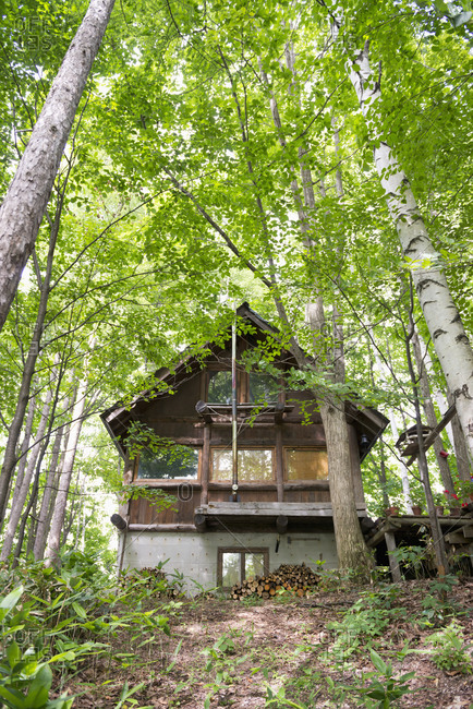 Old wooden house in the forest