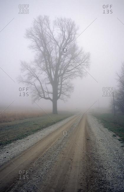 Fog moves in on a gravel country road in Nebraska