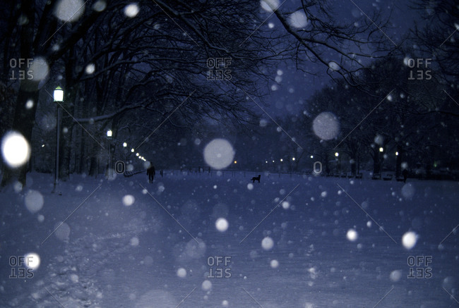Snow falls in a park