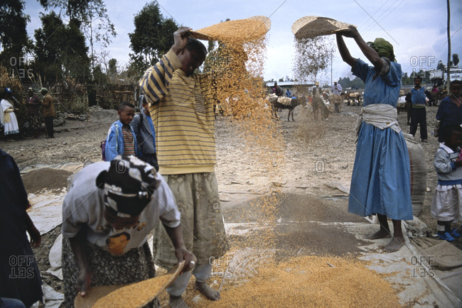 Africa, Ethiopia, Woman and boy threshing grain at roadside