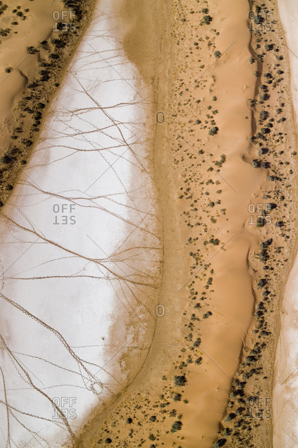 Salt pans deep in the Kalahari with 4x4 tracks and animal tracks