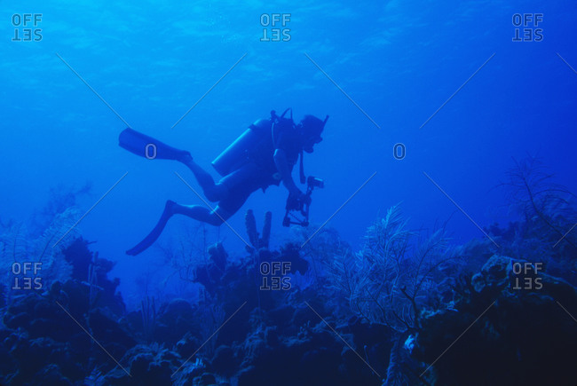 One man scuba diving on coral reef with camera in blue water