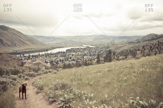 Kamloops Valley