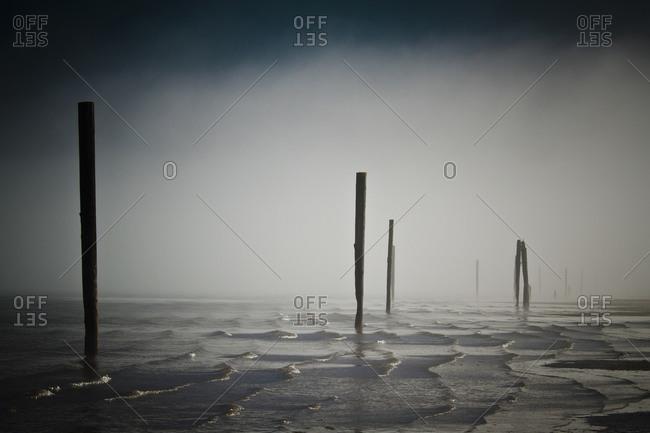 Pitt Lake pilings