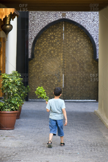 A young boy walks holding a bundle of mint from the local market in front of an elaborate door in the famous medina in Fes el-Bali, Fes, Morocco.