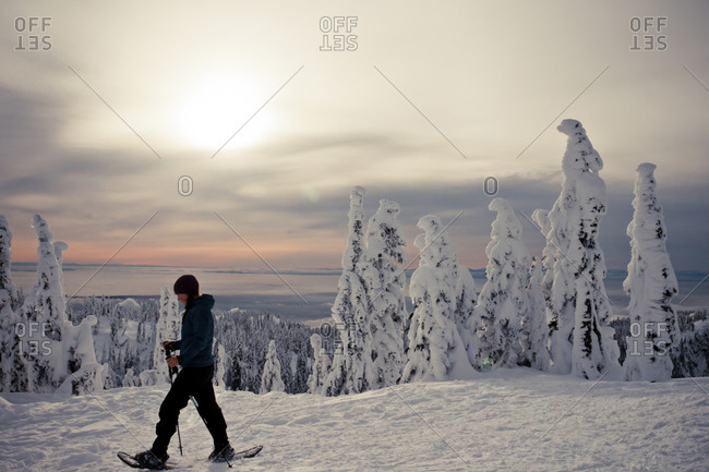 Seymour Mountain Snowshoe