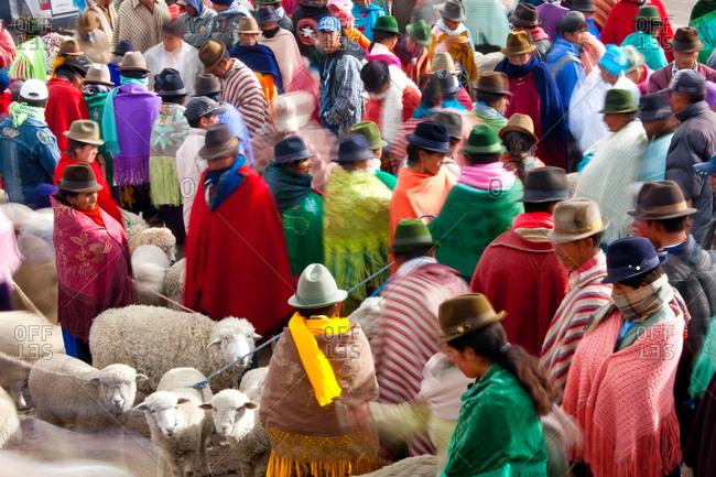 Zumbahua animal market near Latacunga, Ecuador