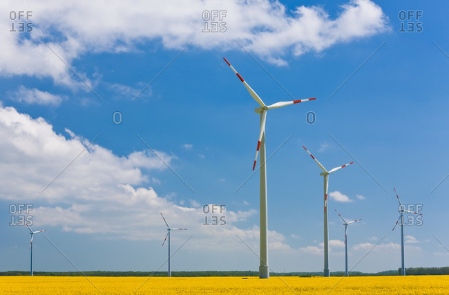 Wind turbines in rape field in Germany