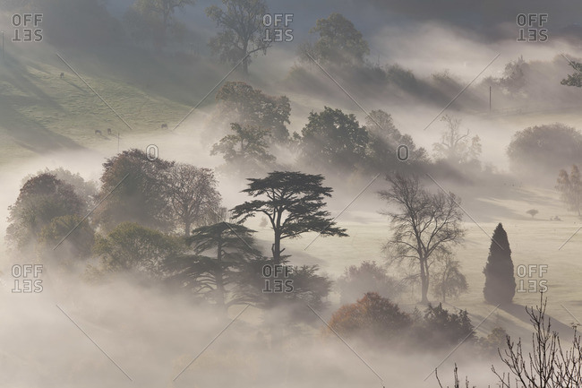 Misty autumn morning in Uley, UK
