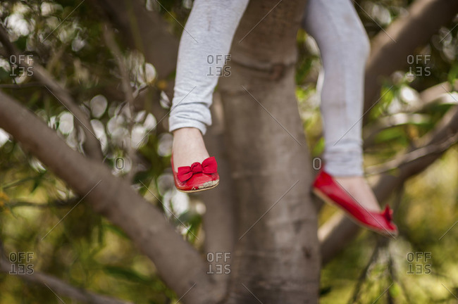 A girl dangling her legs from a tree