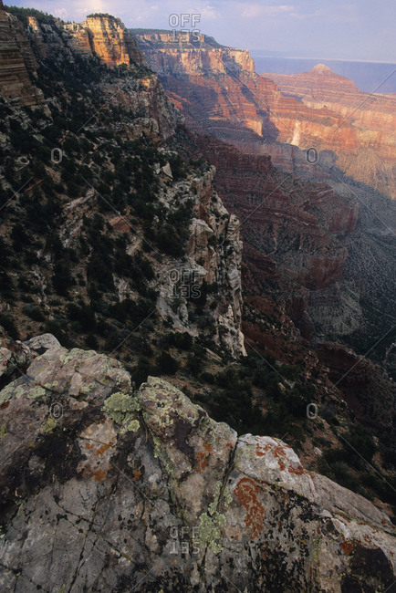 View off of the North Rim of the Grand Canyon.