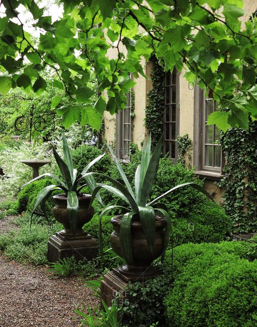 House in lush garden