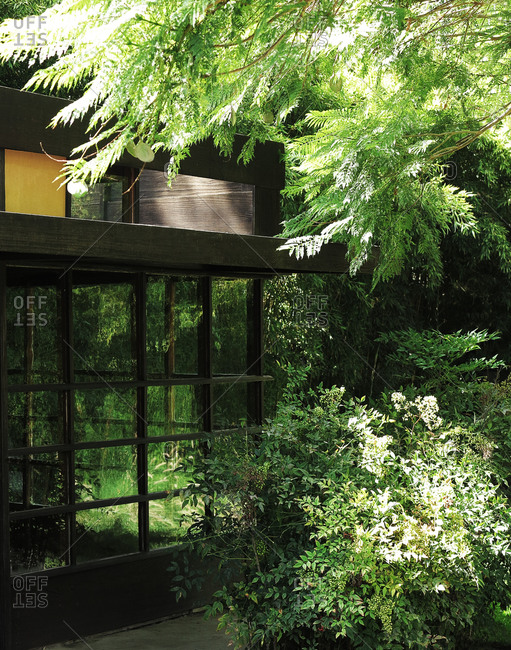 Glass-walled building in the garden