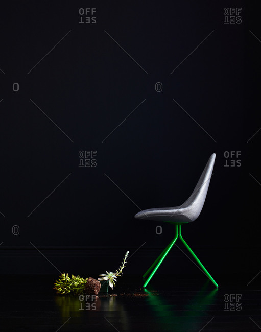 Succulent plants and a chair
