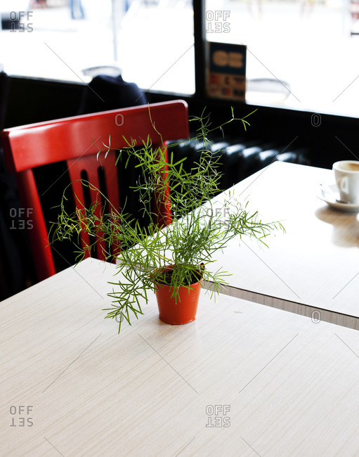 Diner table with a potted plant and a red chair