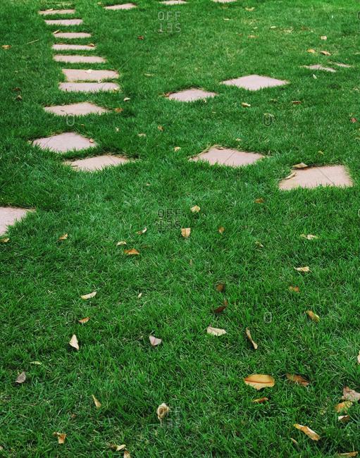 Patio stones make a path through a lawn