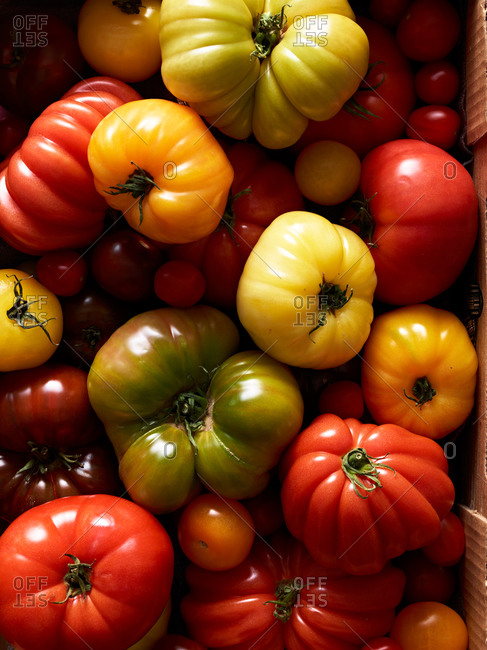 Whole, heirloom tomatoes