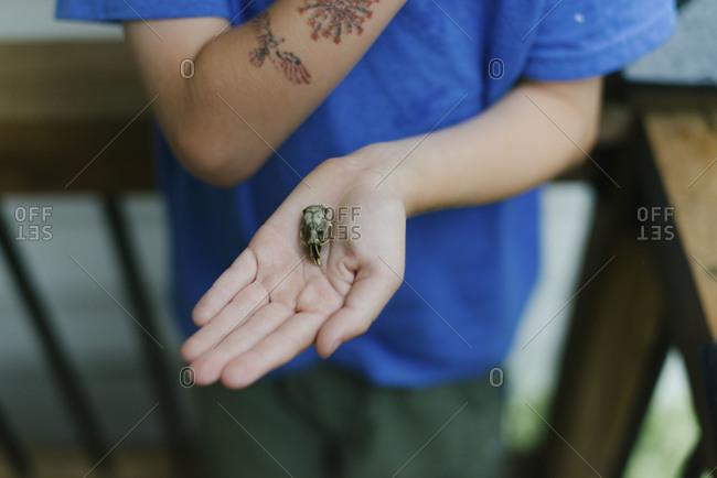 Boy holding a tiny rodent skull