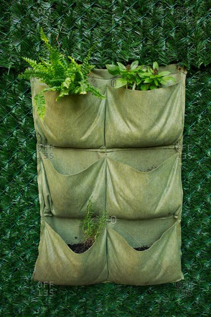 Fabric plant holder on fence